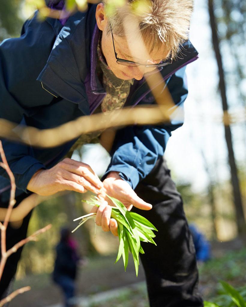 Eine Teilnehmerin des Kurses «Wald als Ressource» sammelt Bärlauch.