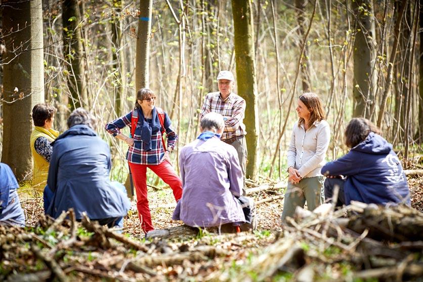 Kursteilnehmende des Weiterbildungskurses «Der Wald als Ressource» im Gespräch.