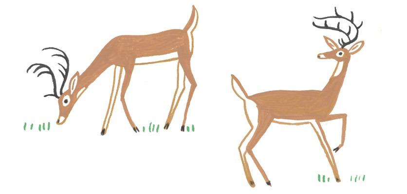 Zeichnung: zwei filigrane Hirsche.