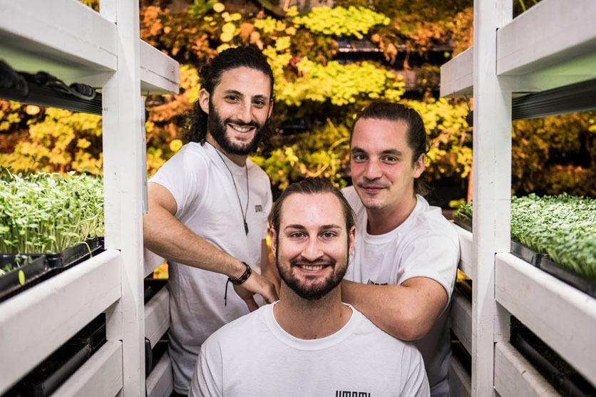 Das innovative Trio Denis, Manu und Robin (von links nach rechts) hat das Start-up Umami in Zürich gegründe