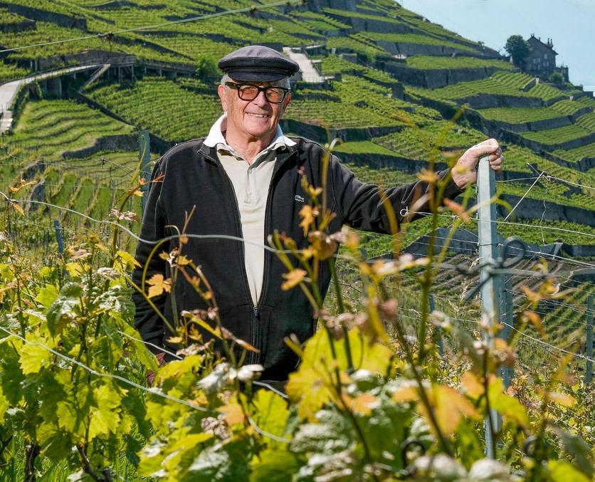 Louis Philippe Bovard in seinen Weinbergen des Lavaux