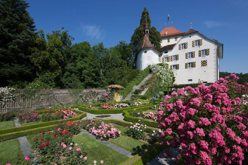 Schloss Heidegg mit Rosengarten