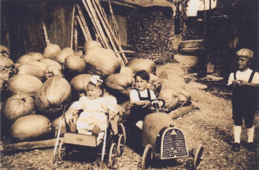 Um 1949: Beatrice Müggler-Steiner aus Gossau SG und ihr Bruder im Kinderwagen und im Rennauto vor der Kürbis-Ernte ihrer Grosseltern.
